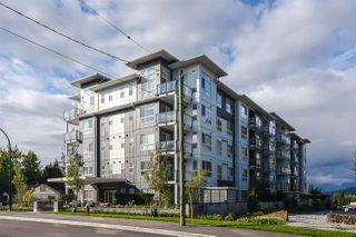 """Photo 17: 501 22315 122 Avenue in Maple Ridge: East Central Condo for sale in """"The Emerson"""" : MLS®# R2409672"""