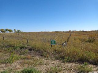 Photo 5: Sidorsky Land SW 24-43-17-W3rd in Battle River: Farm for sale (Battle River Rm No. 438)  : MLS®# SK814834