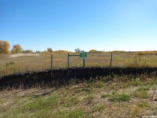 Photo 3: Sidorsky Land SW 24-43-17-W3rd in Battle River: Farm for sale (Battle River Rm No. 438)  : MLS®# SK814834