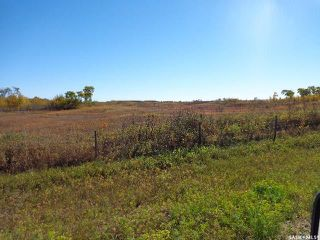 Photo 1: Sidorsky Land SW 24-43-17-W3rd in Battle River: Farm for sale (Battle River Rm No. 438)  : MLS®# SK814834