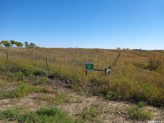 Photo 6: Sidorsky Land SW 24-43-17-W3rd in Battle River: Farm for sale (Battle River Rm No. 438)  : MLS®# SK814834
