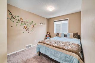 Photo 22: 66 CORNERSTONE Circle NE in Calgary: Cornerstone Detached for sale : MLS®# A1022524