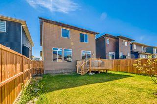 Photo 26: 66 CORNERSTONE Circle NE in Calgary: Cornerstone Detached for sale : MLS®# A1022524