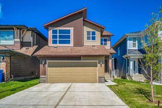 Photo 1: 66 CORNERSTONE Circle NE in Calgary: Cornerstone Detached for sale : MLS®# A1022524