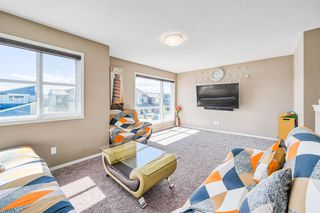 Photo 19: 66 CORNERSTONE Circle NE in Calgary: Cornerstone Detached for sale : MLS®# A1022524