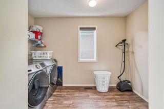 Photo 17: 66 CORNERSTONE Circle NE in Calgary: Cornerstone Detached for sale : MLS®# A1022524