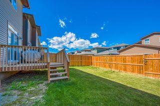 Photo 27: 66 CORNERSTONE Circle NE in Calgary: Cornerstone Detached for sale : MLS®# A1022524