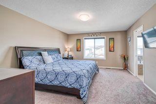 Photo 14: 66 CORNERSTONE Circle NE in Calgary: Cornerstone Detached for sale : MLS®# A1022524