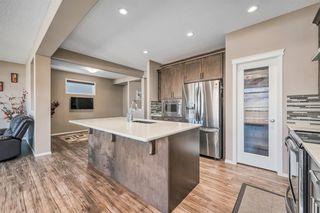 Photo 9: 66 CORNERSTONE Circle NE in Calgary: Cornerstone Detached for sale : MLS®# A1022524
