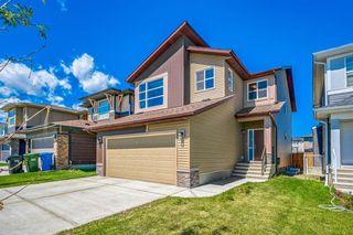 Photo 2: 66 CORNERSTONE Circle NE in Calgary: Cornerstone Detached for sale : MLS®# A1022524
