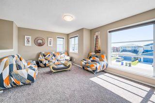 Photo 20: 66 CORNERSTONE Circle NE in Calgary: Cornerstone Detached for sale : MLS®# A1022524
