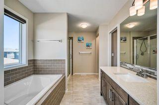 Photo 15: 66 CORNERSTONE Circle NE in Calgary: Cornerstone Detached for sale : MLS®# A1022524