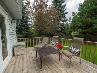 Photo 24: 108 WOLF WILLOW Close in Edmonton: Zone 22 House for sale : MLS®# E4167903