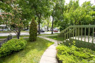 Photo 7: 11128 97 Street in Edmonton: Zone 08 House for sale : MLS®# E4174811