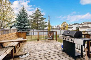 Photo 43: 102 SUNFLOWER Lane: Sherwood Park House for sale : MLS®# E4217495