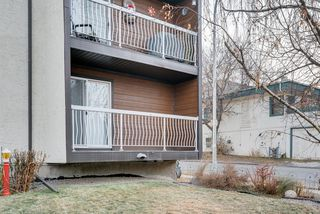 Photo 15: 206 2140 17A Street SW in Calgary: Bankview Apartment for sale : MLS®# A1053247
