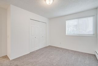 Photo 13: 206 2140 17A Street SW in Calgary: Bankview Apartment for sale : MLS®# A1053247
