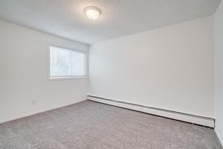 Photo 12: 206 2140 17A Street SW in Calgary: Bankview Apartment for sale : MLS®# A1053247