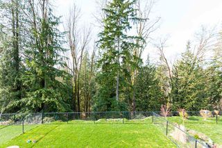 "Photo 5: 15 23810 132 Avenue in Maple Ridge: Silver Valley House for sale in ""Cedarbrook North"" : MLS®# R2436974"