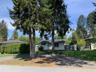 Main Photo: 21991 CLIFF Avenue in Maple Ridge: West Central House for sale : MLS®# R2454113