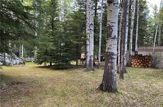 Photo 8: 350084 TWP 35-0: Rural Clearwater County Land for sale : MLS®# C4297425