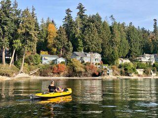 Photo 18: 3435 BEACH AVENUE: Roberts Creek House for sale (Sunshine Coast)  : MLS®# R2414197