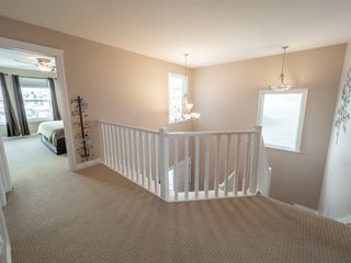 Photo 17: 209 SILVERSTONE Crescent: Stony Plain House for sale : MLS®# E4187056