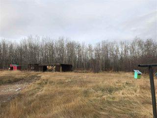 Photo 31: 57504 Range Road 225: Rural Sturgeon County House for sale : MLS®# E4189347