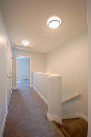 Photo 11: 9325 93 Street NW in Edmonton: Zone 18 House Triplex for sale : MLS®# E4202549