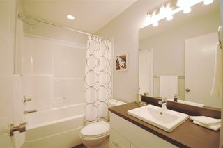 Photo 12: 9325 93 Street NW in Edmonton: Zone 18 House Triplex for sale : MLS®# E4202549