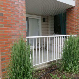Photo 8: #103 920 156 Street NW in Edmonton: Zone 14 Condo for sale : MLS®# E4203802