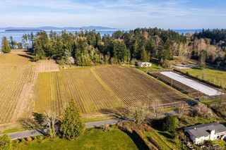 Photo 6: 6539 Welch Rd in Central Saanich: CS Martindale Land for sale : MLS®# 836410
