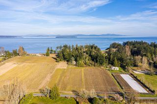 Photo 3: 6539 Welch Rd in Central Saanich: CS Martindale Land for sale : MLS®# 836410