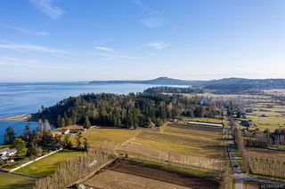 Photo 9: 6539 Welch Rd in Central Saanich: CS Martindale Land for sale : MLS®# 836410