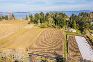 Photo 4: 6539 Welch Rd in Central Saanich: CS Martindale Land for sale : MLS®# 836410