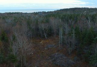 Photo 4: Lot 15-X-Y 0 Dyke Road in Eastern Passage: 11-Dartmouth Woodside, Eastern Passage, Cow Bay Vacant Land for sale (Halifax-Dartmouth)  : MLS®# 202014002