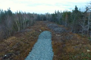 Photo 5: Lot 15-X-Y 0 Dyke Road in Eastern Passage: 11-Dartmouth Woodside, Eastern Passage, Cow Bay Vacant Land for sale (Halifax-Dartmouth)  : MLS®# 202014002