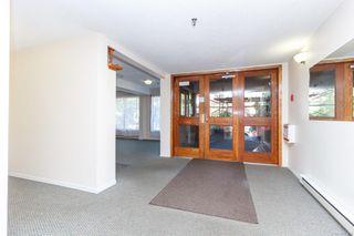 Photo 3: 304 1137 View St in : Vi Downtown Condo for sale (Victoria)  : MLS®# 854797