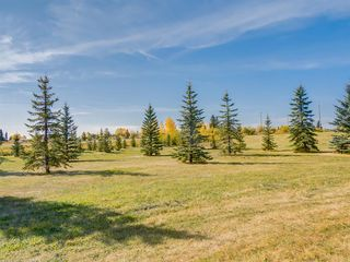 Photo 46: 42100 COCHRANE LAKE in Rural Rocky View County: Rural Rocky View MD Detached for sale : MLS®# A1035617