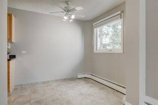 Photo 12: 201 312 CEDAR Crescent SW in Calgary: Spruce Cliff Apartment for sale : MLS®# A1057235