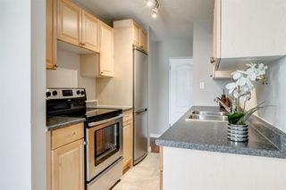 Photo 9: 201 312 CEDAR Crescent SW in Calgary: Spruce Cliff Apartment for sale : MLS®# A1057235