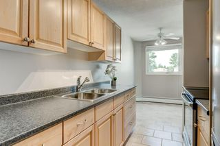 Photo 11: 201 312 CEDAR Crescent SW in Calgary: Spruce Cliff Apartment for sale : MLS®# A1057235