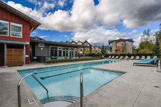 Photo 14: 31 2310 RANGER LANE in Port Coquitlam: Riverwood Townhouse for sale : MLS®# R2388159