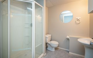 Photo 28: 976 WALLBRIDGE Place in Edmonton: Zone 22 House for sale : MLS®# E4176614