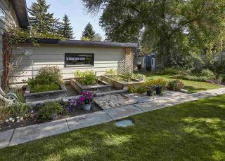 Photo 35: 96 VALLEYVIEW Crescent in Edmonton: Zone 10 House for sale : MLS®# E4207542