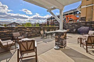 Photo 16: 415 1585 GLASTONBURY Boulevard in Edmonton: Zone 58 Condo for sale : MLS®# E4219602