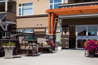 Photo 15: 415 1585 GLASTONBURY Boulevard in Edmonton: Zone 58 Condo for sale : MLS®# E4219602