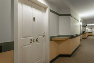Photo 14: 206 78 McKenney Avenue: St. Albert Condo for sale : MLS®# E4221046