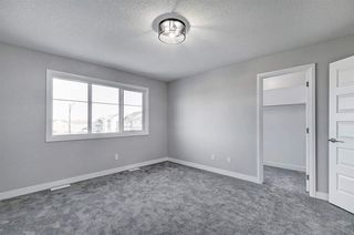 Photo 29:  in Edmonton: Zone 55 House Half Duplex for sale : MLS®# E4224469