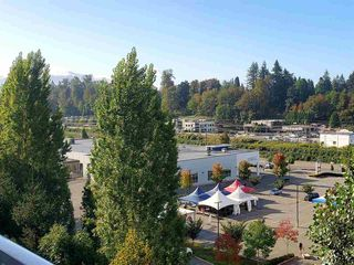 "Photo 14: 310 33960 OLD YALE Road in Abbotsford: Central Abbotsford Condo for sale in ""Old Yale Heights"" : MLS®# R2464949"